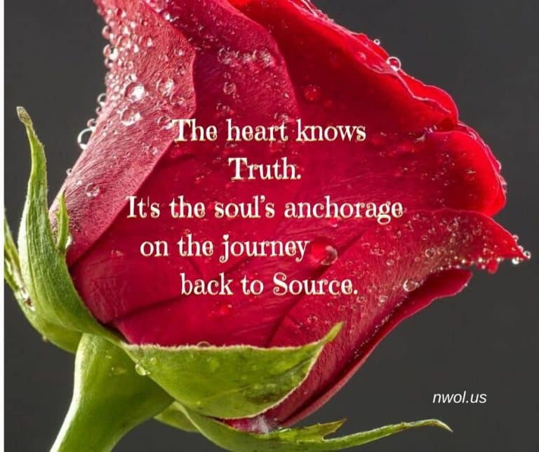 The-heart-knows-Truth-3-211-768x644