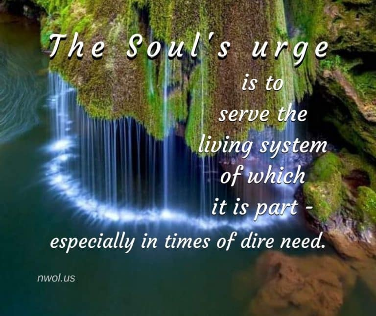 The-urge-of-the-soul-is-to-serve-3-173-768x644
