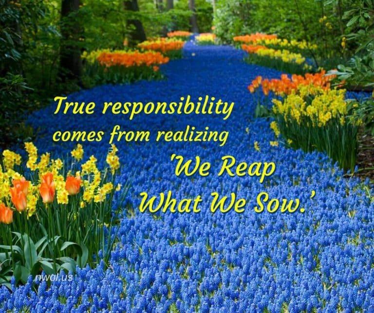 True-responsibility-comes-3-221-768x644